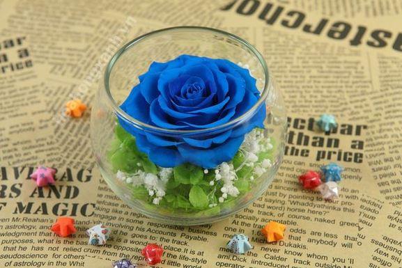 Nguồn gốc hoa hồng xanh