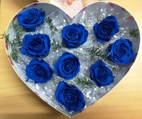 Hoa hồng xanh la