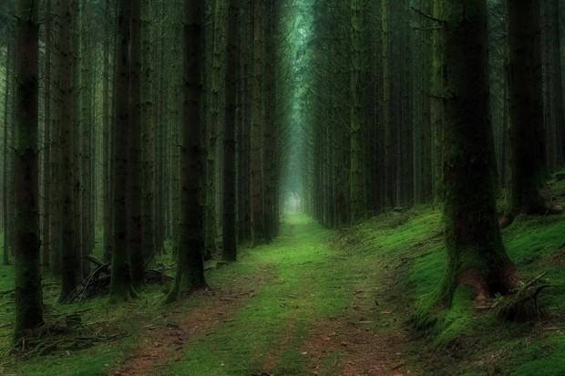 Hình ảnh thiên nhiên đẹp nhất the giới