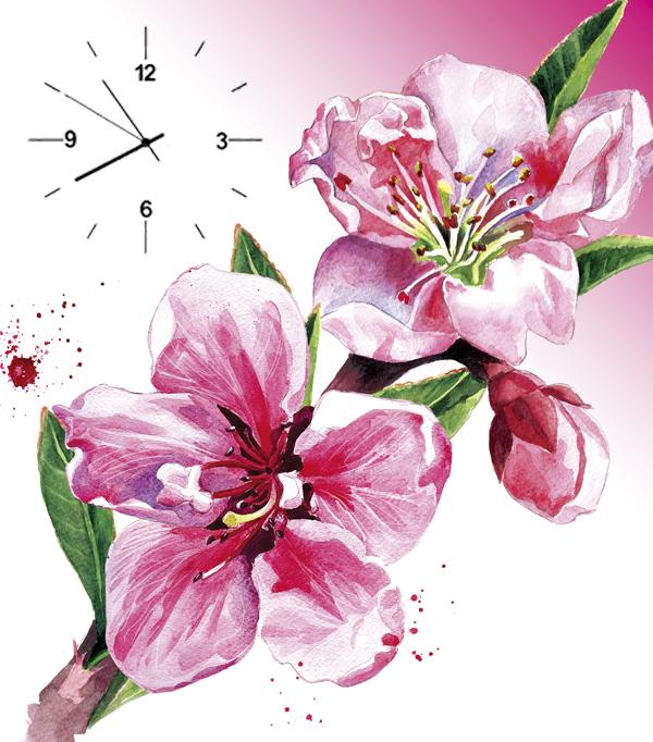 anh tranh dong ho hoa