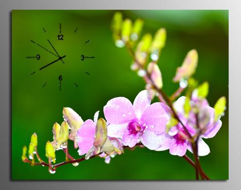 tranh dong ho hoa lan rung