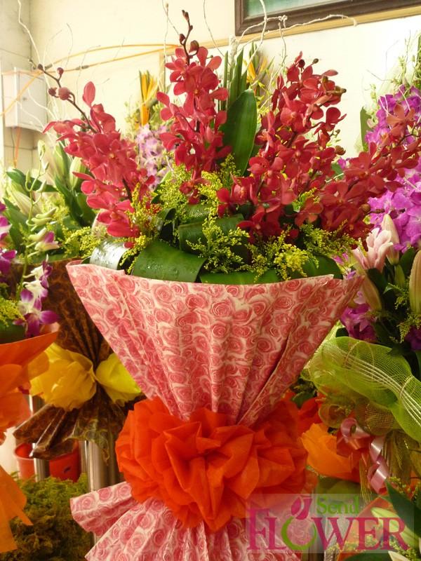 hoa dep 20-11