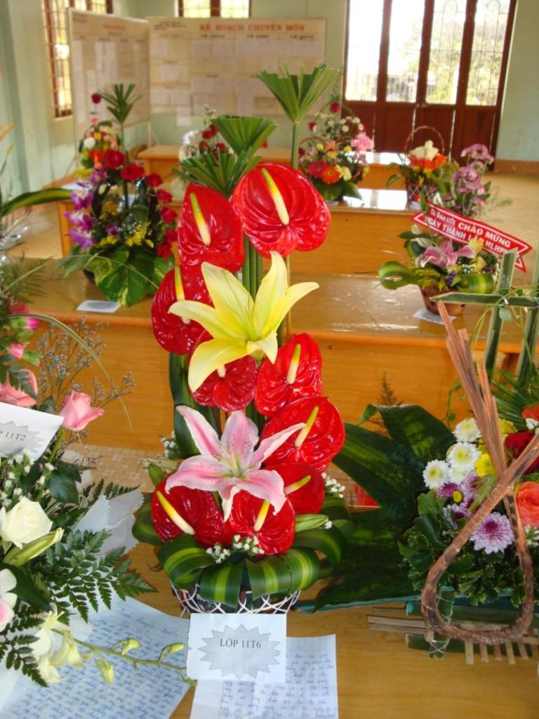 anh hoa dep 20-11