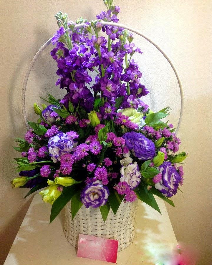 hoa dep 20- 11