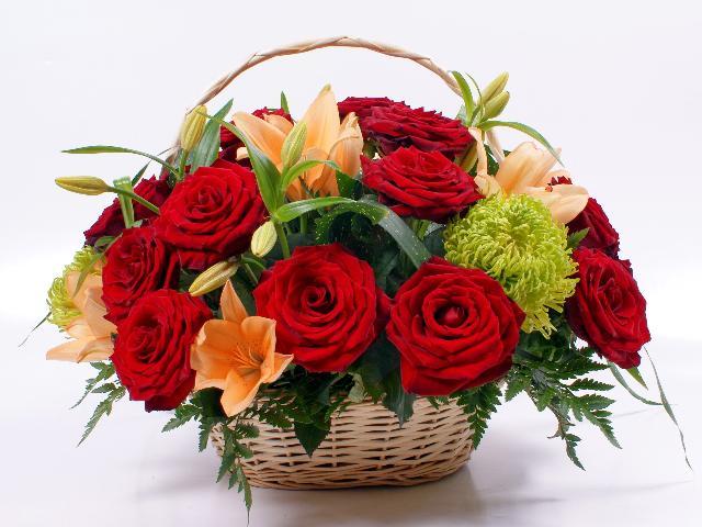 anh hoa dep 8- 3