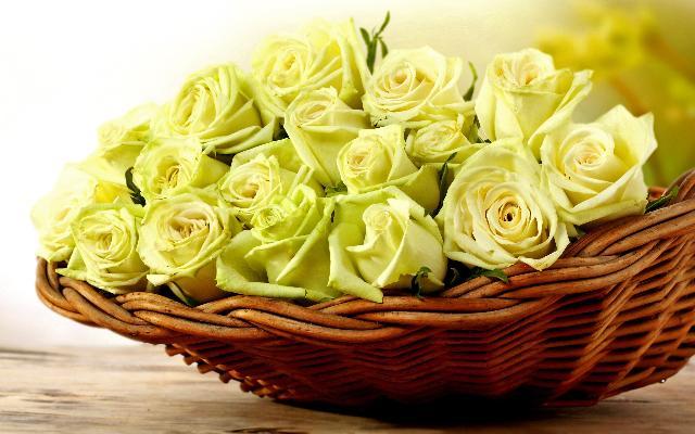 hoa dep 8- 3