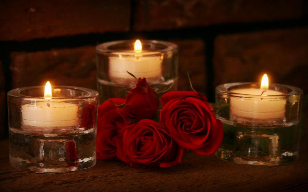 Hình ảnh hoa hồng nhung