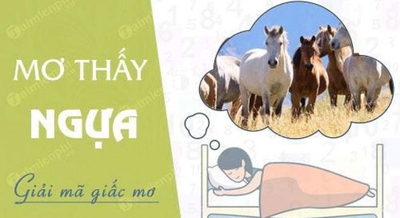 Giải mã giấc mơ thấy Ngựa, chiêm bao thấy Ngựa (Ngọ) có điềm gì?