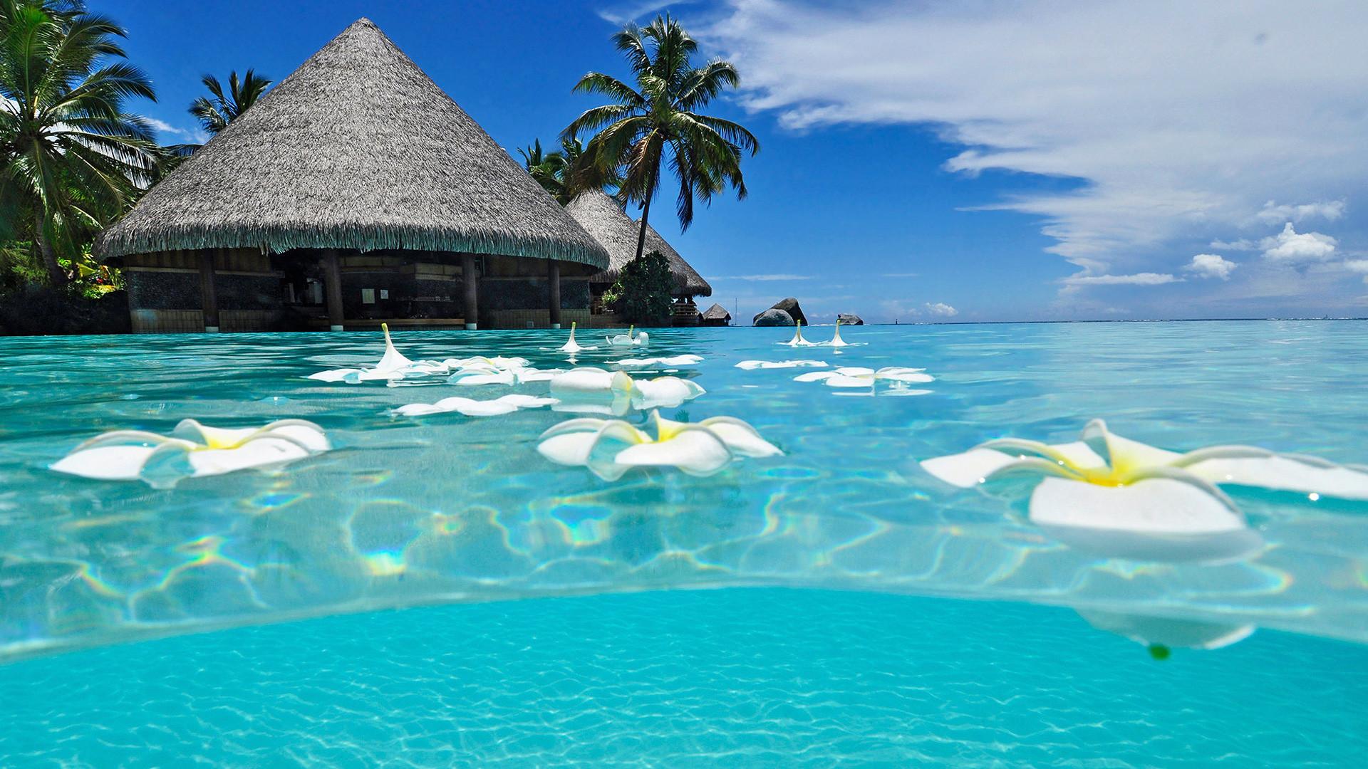 Nước biển trong xanh tại một resort