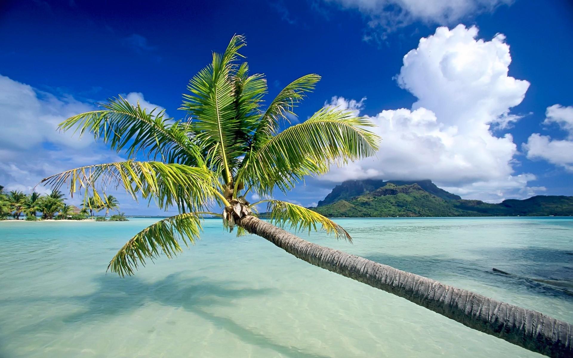Một hòn đảo được nhìn từ bờ biển