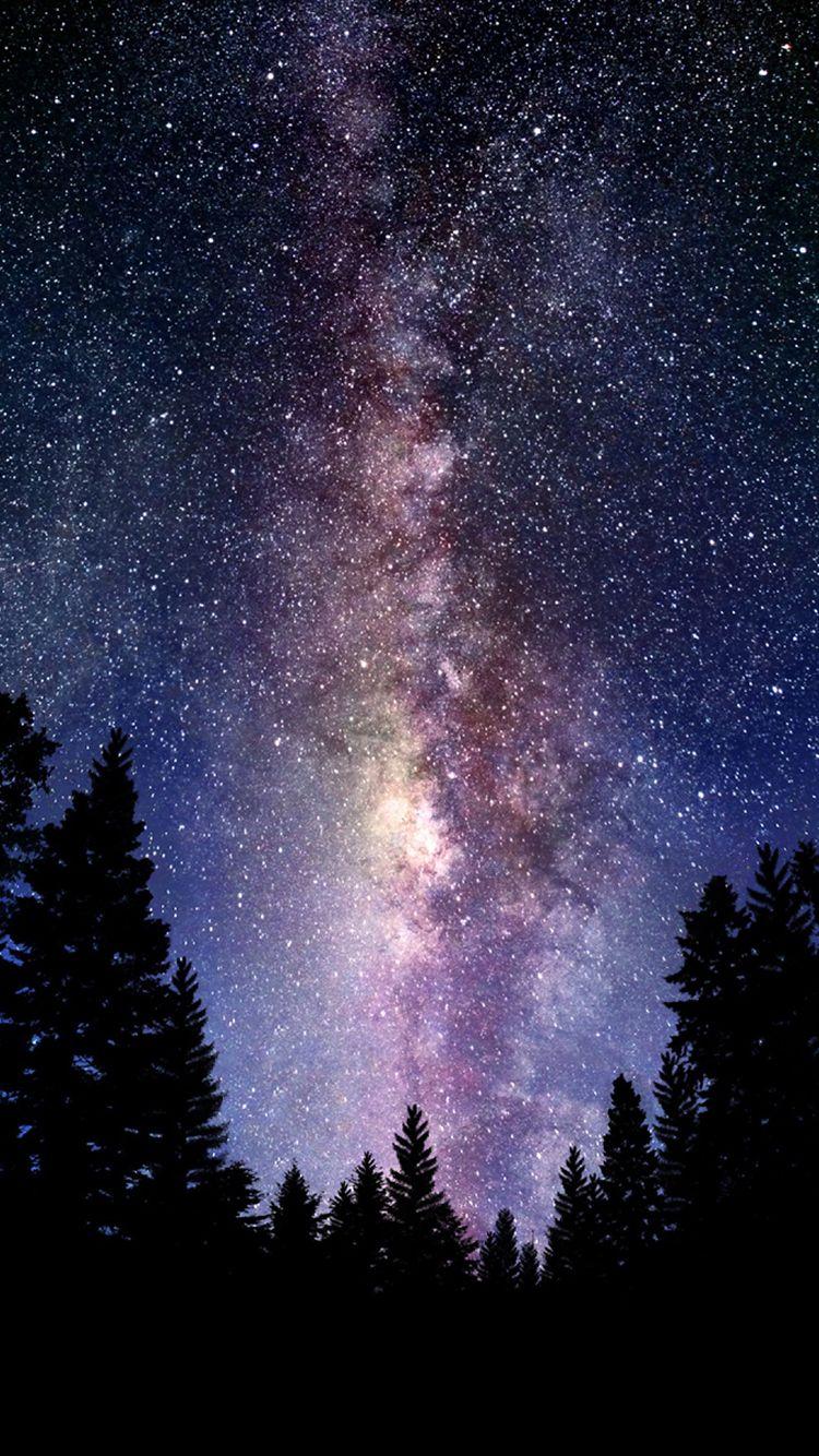 Những chòm sao trong vụ trụ
