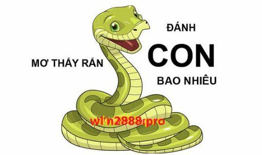 Mơ thấy rắn: Giải mã giấc mơ lô đề thấy rắn cắn
