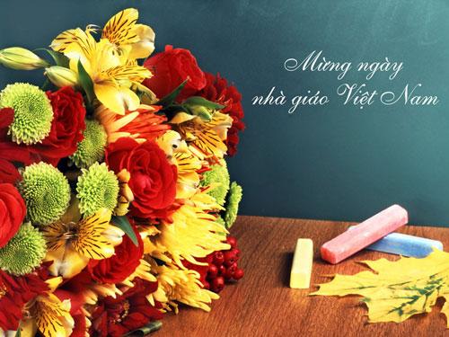 Hình ảnh hoa 20-11 đẹp và ý nghĩa tặng quý thầy cô