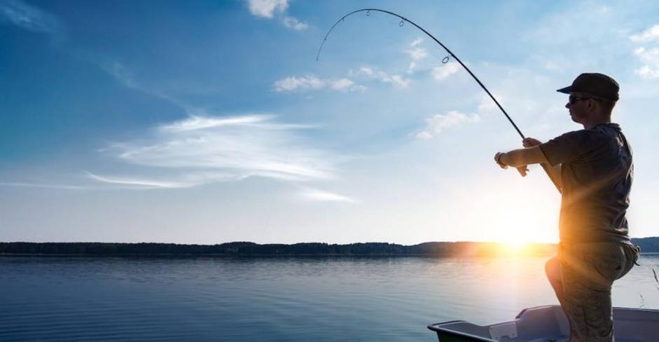 Mơ thấy câu được cá đánh con gì, Điềm báo Lành hay Dữ ?