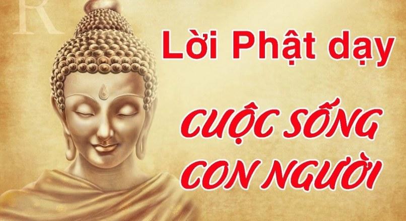 25+ Lời Phật Dạy Về Cuộc Sống Bạn Nên Biết