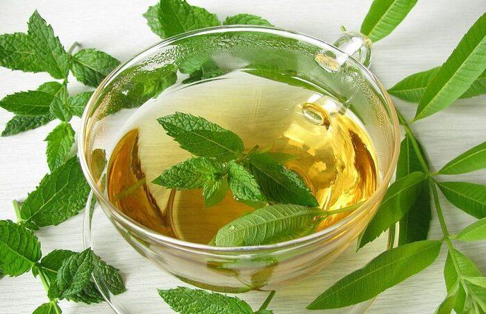 Khi xông hơi, tinh dầu bạc hà giúp làm sạch đường hô hấp hiệu quả