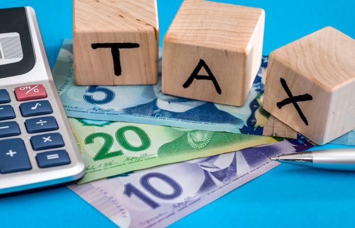 Nộp thuế môn bài theo đúng quy định pháp luật