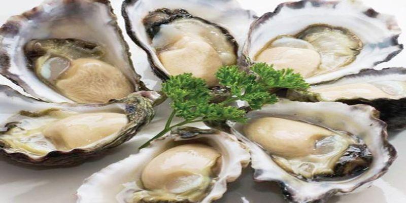Hình 1: Hàu biển là một trong những thực phẩm giúp tăng ham muốn ở đàn ông