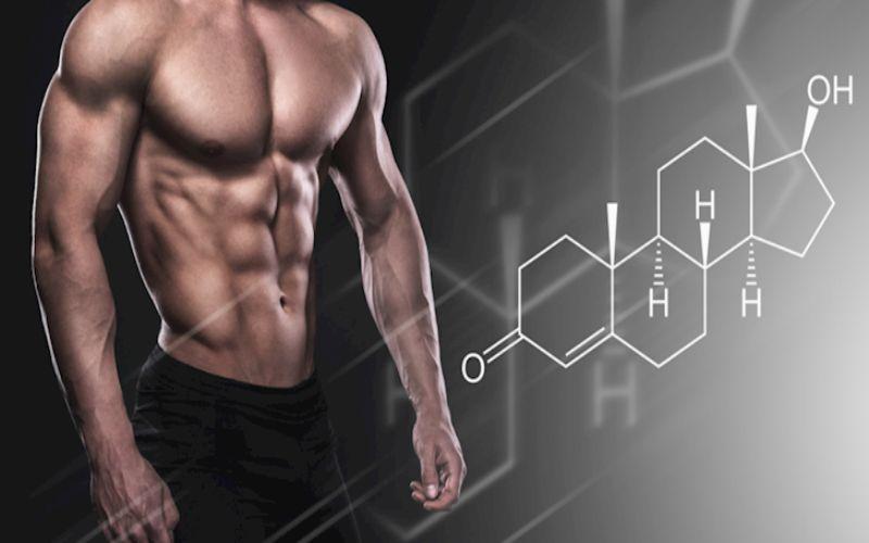 Hình 1: Nồng độ Estrogen trong cơ thể nam giới cao dẫn đến nhu cầu tình dục cao hơn