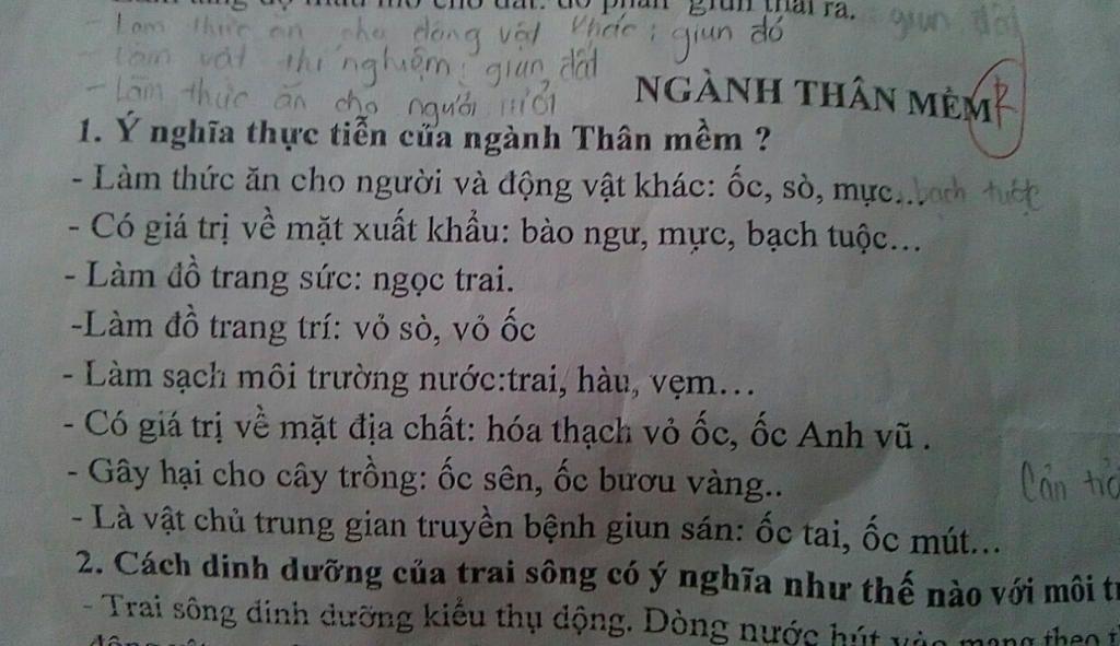 dac-diem-chung-va-vai-tro-thuc-tien-cua-nganh-than-mem-vi-du
