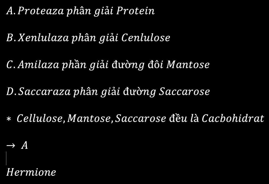 enzim-nao-khong-phan-giai-duoc-cacbohidrat-a-proteaza-b-enlulaza-c-amilaza-d-saccaraza-giup-mik