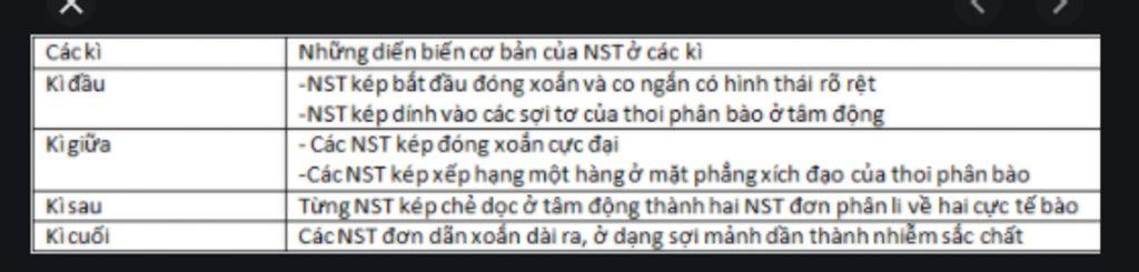 tai-sao-co-su-thay-doi-hinh-thai-nst-qua-cac-ki-nguyen-phan-gappppp